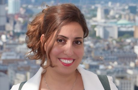 A Day in The Life of an Engineer, Dr. Fatemeh Hoveizavi